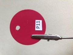 LOW-P11.jpg